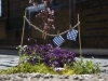 Urban Gardening Impressionen