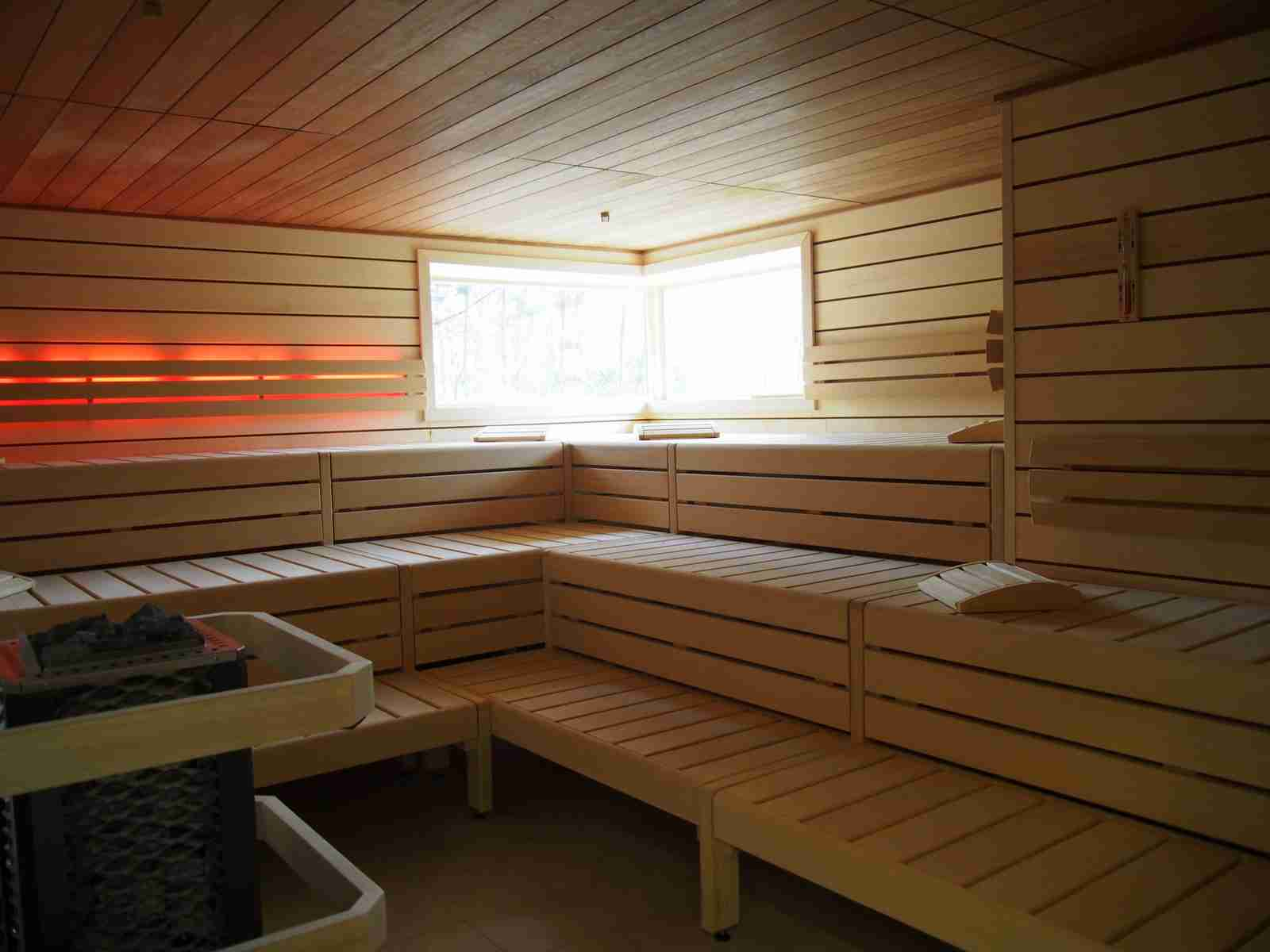 sauna 65 swingerclub in hh