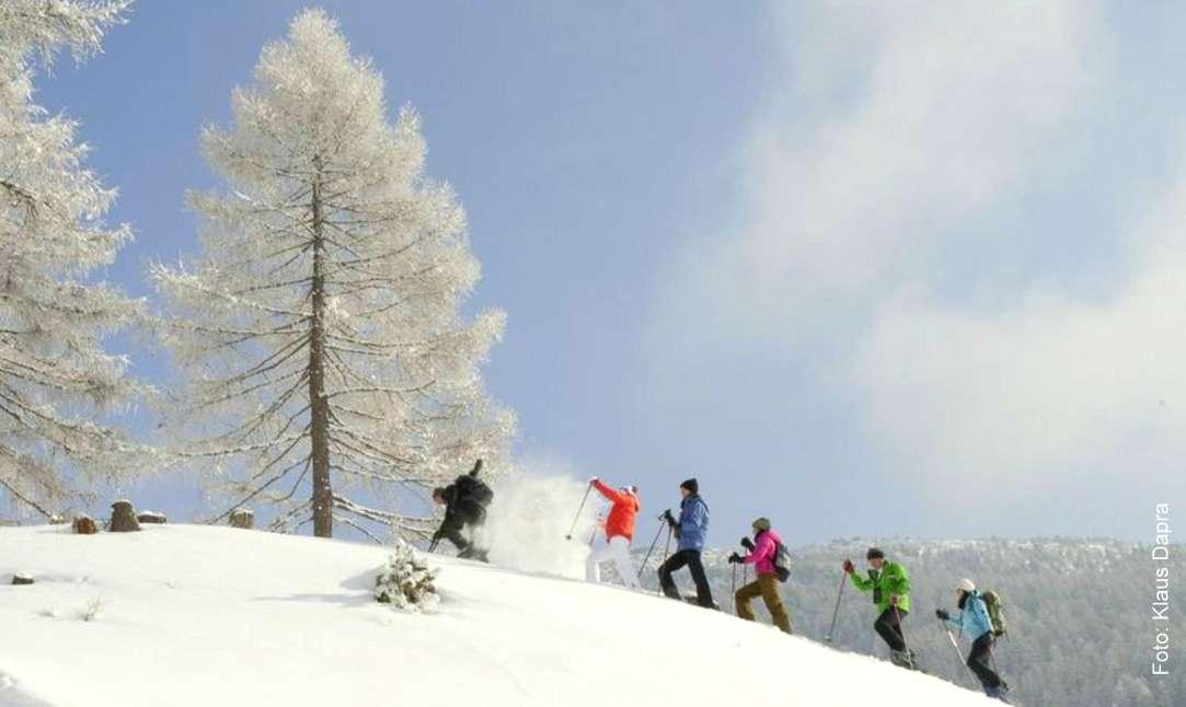 Im Schnee mit Schneeschuhen Foto: Klaus Darpa