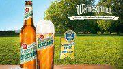 Wernesgrüner 1436