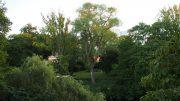 Impressionen aus dem planten un blomen Park in Hamburg