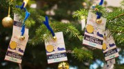 Auto Wichert Wish Tree 2015