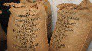 Kaffeesäcke mit Rohkaffee