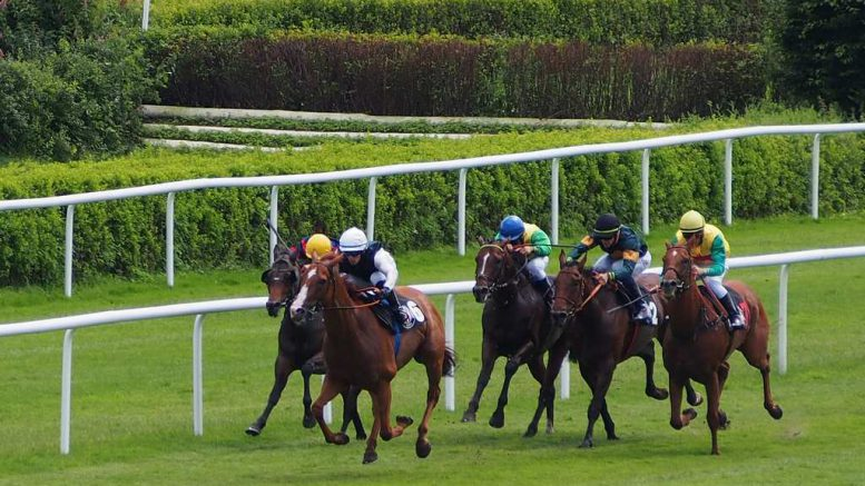 Galopprennen IDEE 147. Deutsches Derby