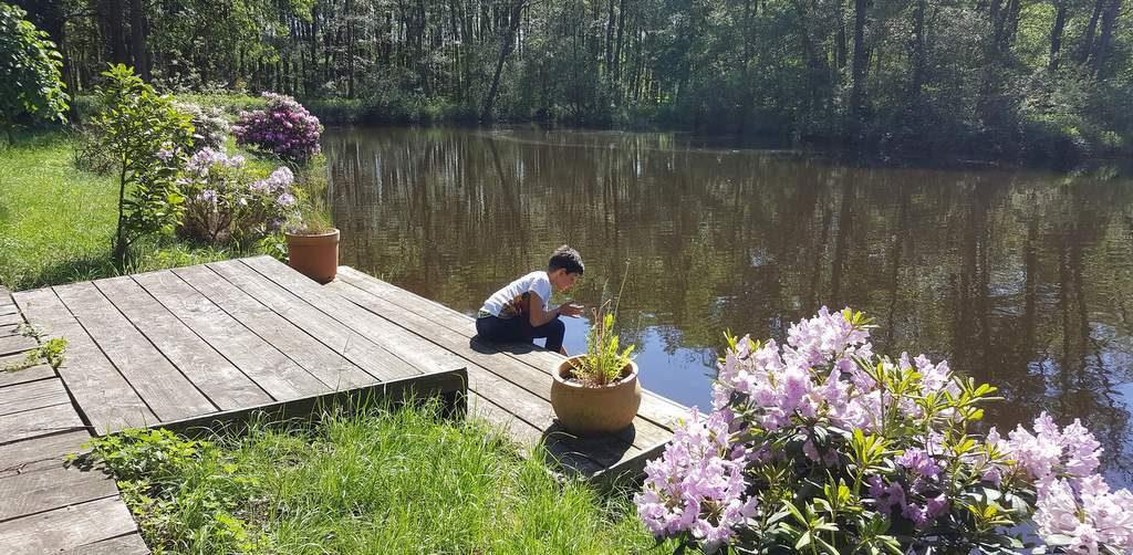 Blick auf den Mühlenteich mit spielenden Kind
