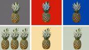 Die Ananas Reihe