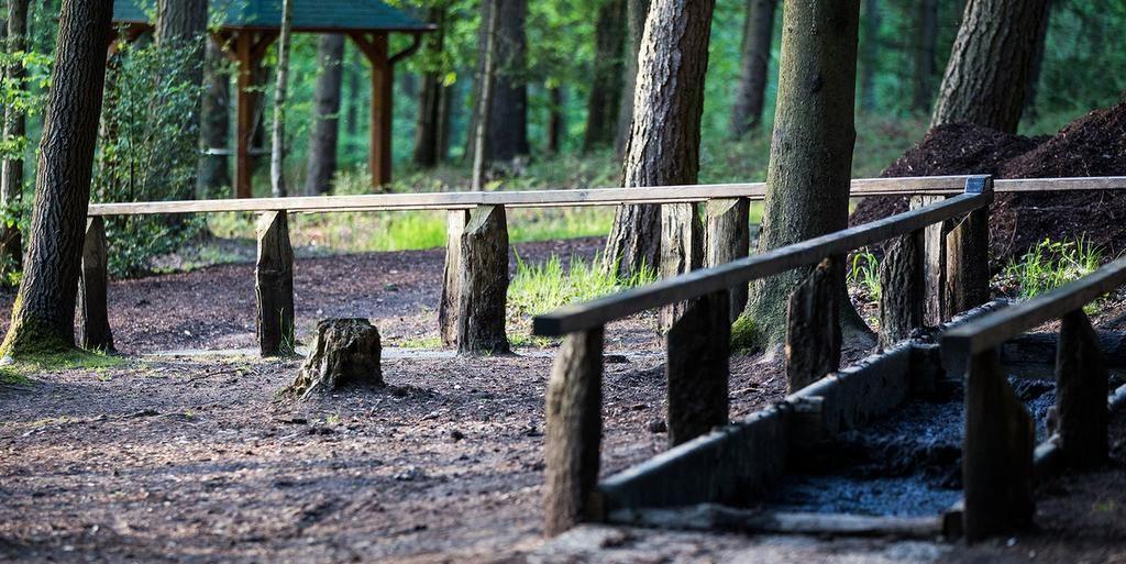 Barfußpark in Egestorf