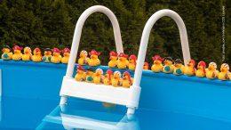 Swimming Pool mit Badeenten