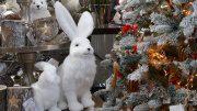 Der Garten von Ehren Weihnachtsmarkt in Hamburg Marmstorf