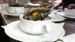Vorspeise mit Austern