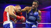 Zwei Boxer im Ring in Hamburg