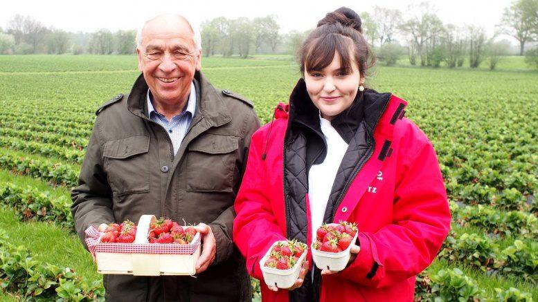 Enno Glantz mit Mitarbeiterin auf einem Erdbeerfeld