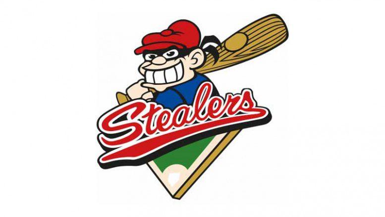 Logo der Hamburg Stealers