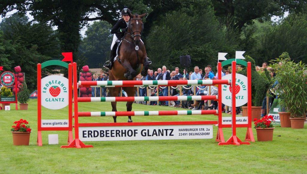 Ein Pferd springt über ein Hindernis