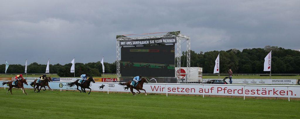 Galopprennen - Pferde auf der Rennbahn