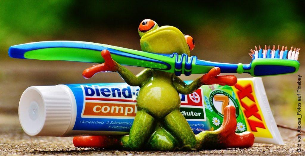 Froschfigur mit Zahnpasta und Zahnbrüste