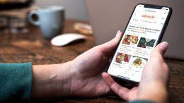 Smartphone mit delinski App