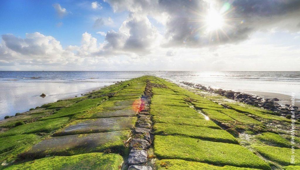 Buhne bei der Nordseeinsel Norderney
