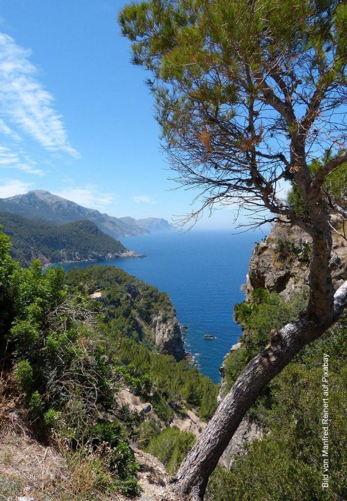 Mallorca Bucht mit Bäumen