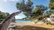 Strand auf Mallorca in einer Bucht