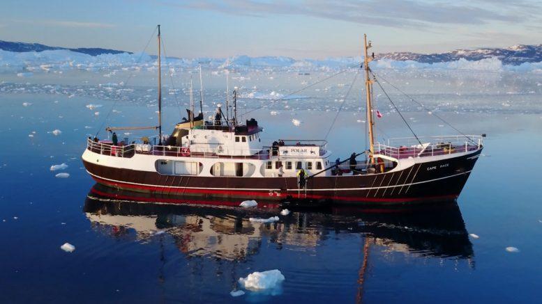 Die Cape Race im Polarmeer