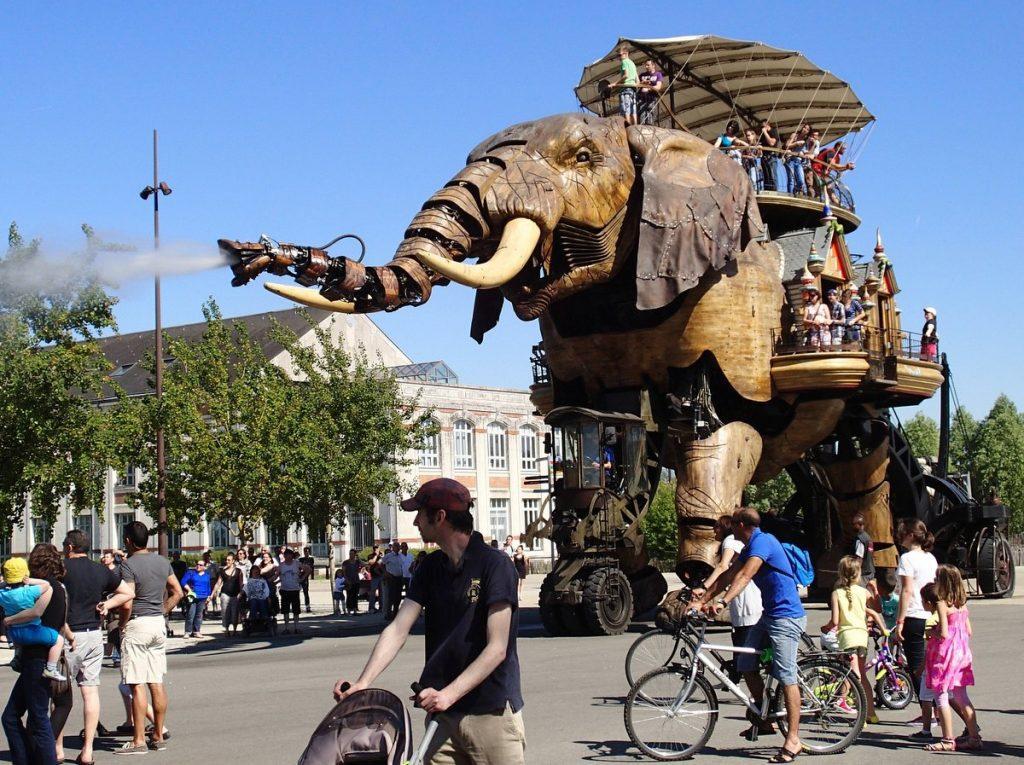 Der Elefant mit Publikum