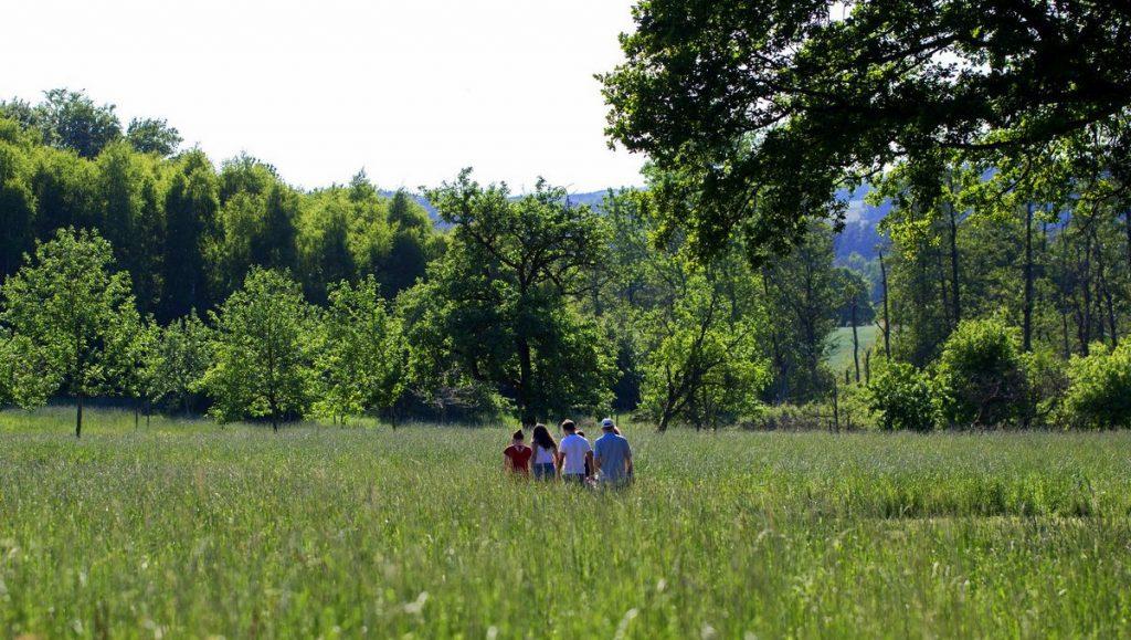 Gruppe geht durch den Barfußpark bei Sonnenschein im Frühsommer in der Lüneburger Heide