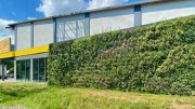Living Wall an einem Supermarkt in Hamburg