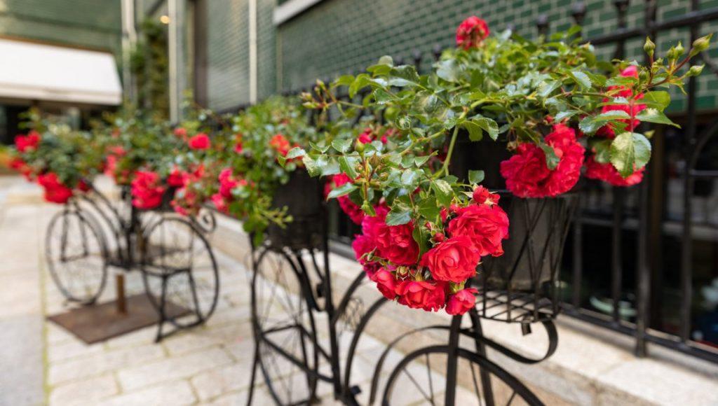 Blumenfahrräder