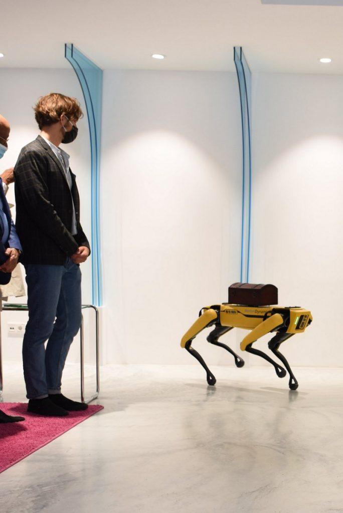 Roboter Hund