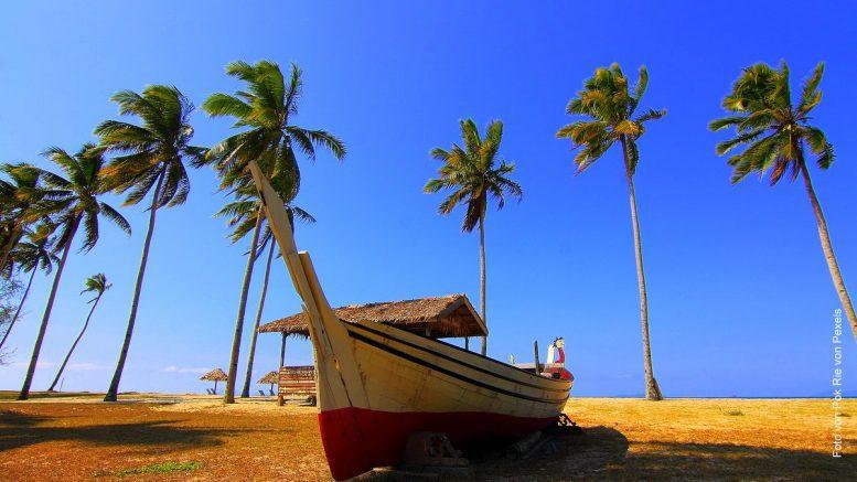 Kokospalmen am Strand mit Holzboot im Vordergrund