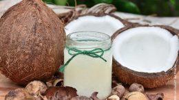 Kokosnuss offen und geschlossen mit Glasbehälter Kokosöl