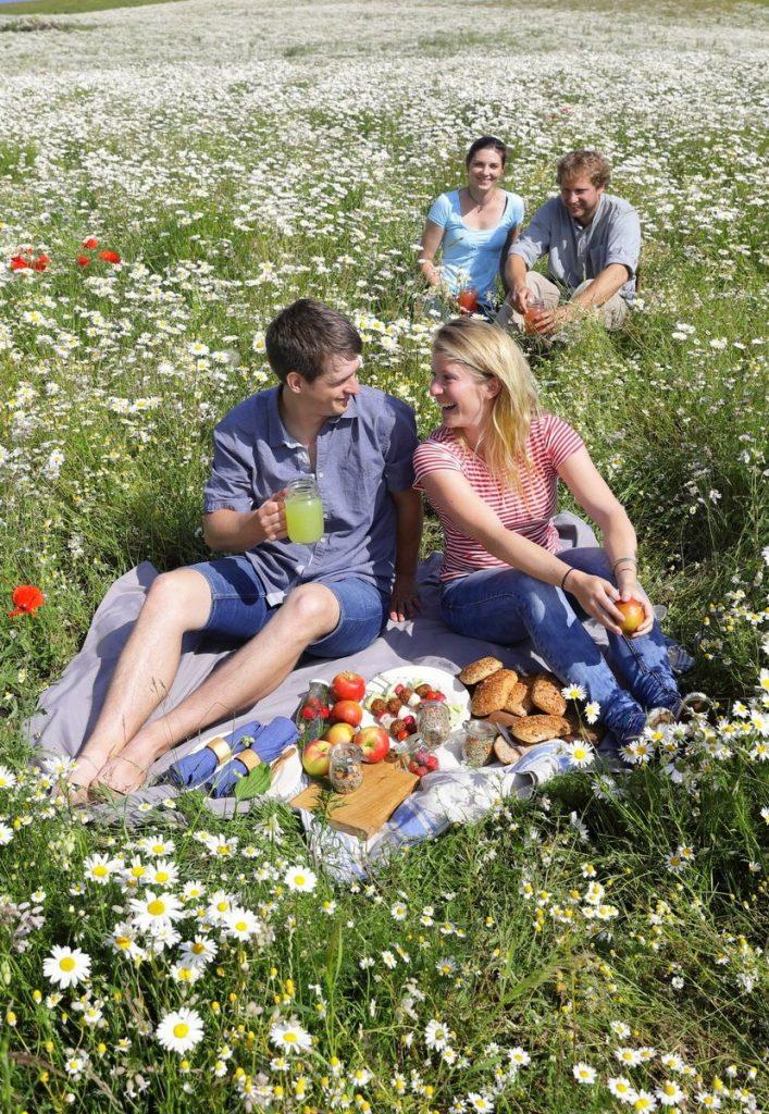 Zwei Paare beim Picknick auf einer Blumenwiese