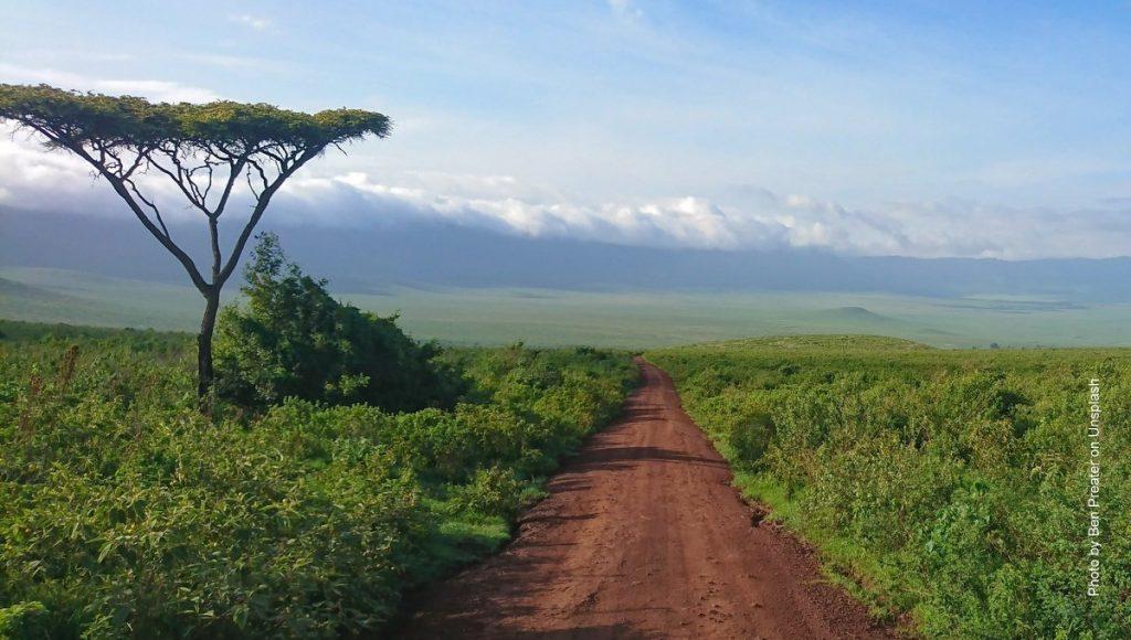 Savanne in Tansania