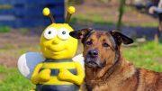 Bienenfigur mit Hund