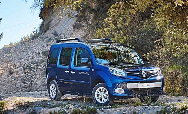 Baluer Renault Kangoo Hochdachkombi in der Landschaft