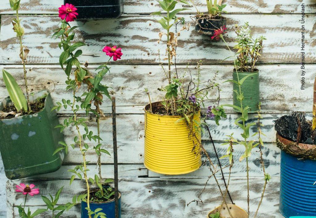Urban Gardening - Blumentöpfe