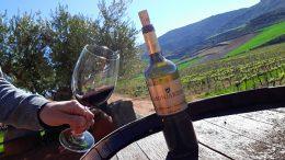 Weinfass, Weinflasche und Weinglas in einem Weinberg