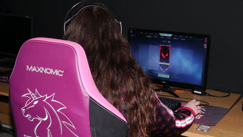 Beim Gaming Unicorns of Love