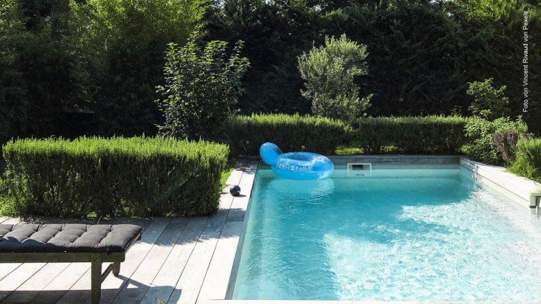 Swimming Pool im Garten