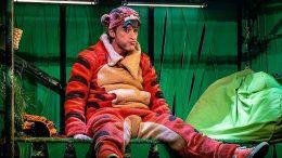 Der achtsame Tiger auf der Bühne